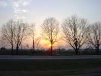KY sunset thru trees2_200x113